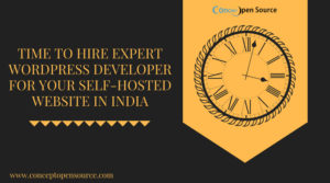 Hire-Expert-Wordpress-Developers