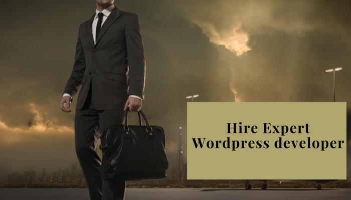 expert-wordpress-developers